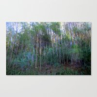 Forest For The Trees For… Canvas Print