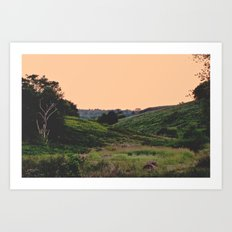 Sunset at the Hills Art Print