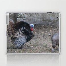 Turkey Struttin' Laptop & iPad Skin