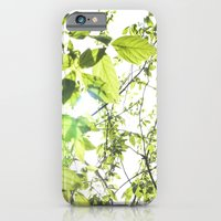 iPhone & iPod Case featuring green by anna ramon photography