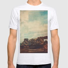 Fractions A15 Mens Fitted Tee Ash Grey SMALL