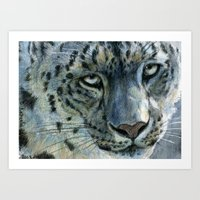 Snow-Leopard Glance 810 Art Print