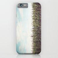 Cornfield iPhone 6 Slim Case