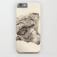iPhone & iPod Case featuring Rose by Ursula Rodgers