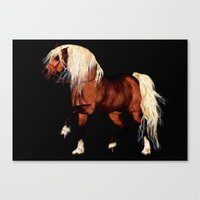 HORSE - Black Forest Canvas Print