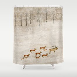 Shower Curtain - a new home for winter - bri.buckley