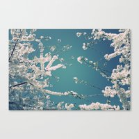 Reconnect Canvas Print