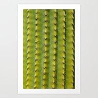 Cactus skin 2786 Art Print