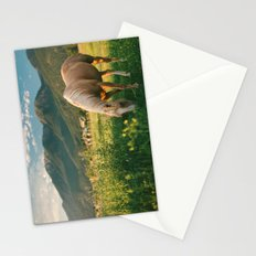 Pretty Horse Eating Grass in the Montana Sunset Stationery Cards