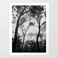 A Walk in the Clouds #1 Art Print