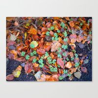 Canvas Print featuring Clovers in Fall by a.rochelle
