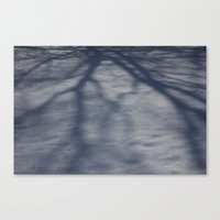 Snowy Shadow Canvas Print
