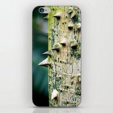 Thorny tree Botanical Photography iPhone & iPod Skin