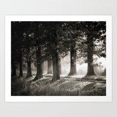 Summers' End Art Print