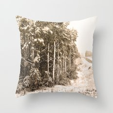 Winter Roadside Throw Pillow