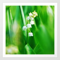Lily  Of The Valley Natu… Art Print