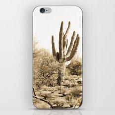 Saguaro iPhone & iPod Skin