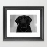 Lottie Dog Framed Art Print