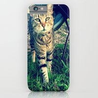 iPhone & iPod Case featuring Speedy  by Lindsey