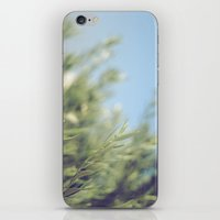 Fresh Air iPhone & iPod Skin