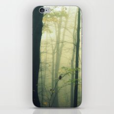 Let the Silence Take Me iPhone & iPod Skin