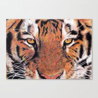 Tiger Close-up Canvas Print