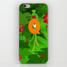 q for quetzal iPhone & iPod Skin