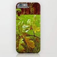 iPhone & iPod Case featuring Peaceful Autumn by Vorona Photography