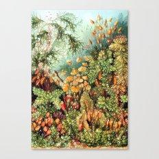 Botanic Vintage Canvas Print