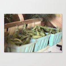 peas Canvas Print