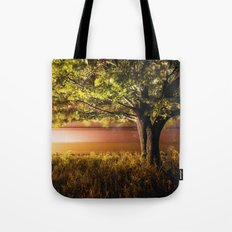 Wind of the Railroad Tote Bag
