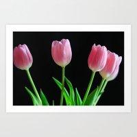 Dreamtime Tulips Art Print
