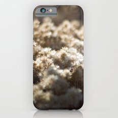 Winter's Asters iPhone 6s Slim Case