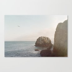A Break From the Pack Canvas Print