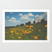 Dreaming in a Summer Field Art Print