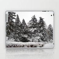 Laptop & iPad Skin featuring Winter by Vitta
