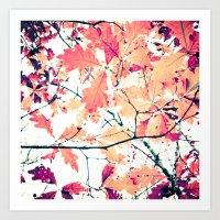 October Oak Art Print
