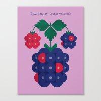 Fruit: Blackberry Canvas Print