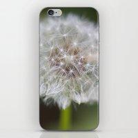 Dandelion Parachute Ball iPhone & iPod Skin