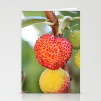 Spring Things Stationery Cards