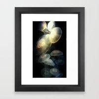 Jellyfish Darkness To Li… Framed Art Print