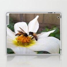 Bees at Work Laptop & iPad Skin