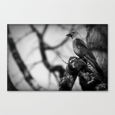 There you are! Canvas Print