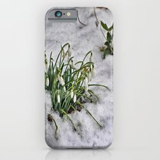 Snowdrops iPhone 6s Slim Case