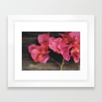 Rosewood Framed Art Print