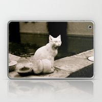 Concrete Cat Laptop & iPad Skin