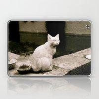 Concrete Cat Laptop & iPad Skin