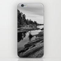 The Massasauga Park iPhone & iPod Skin