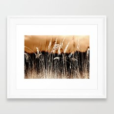 Sow Your Wild Sea Oats Framed Art Print
