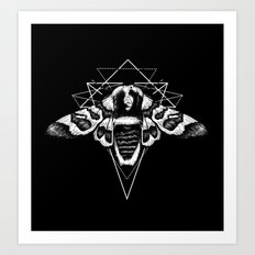 Geometric Moth 2 Art Print